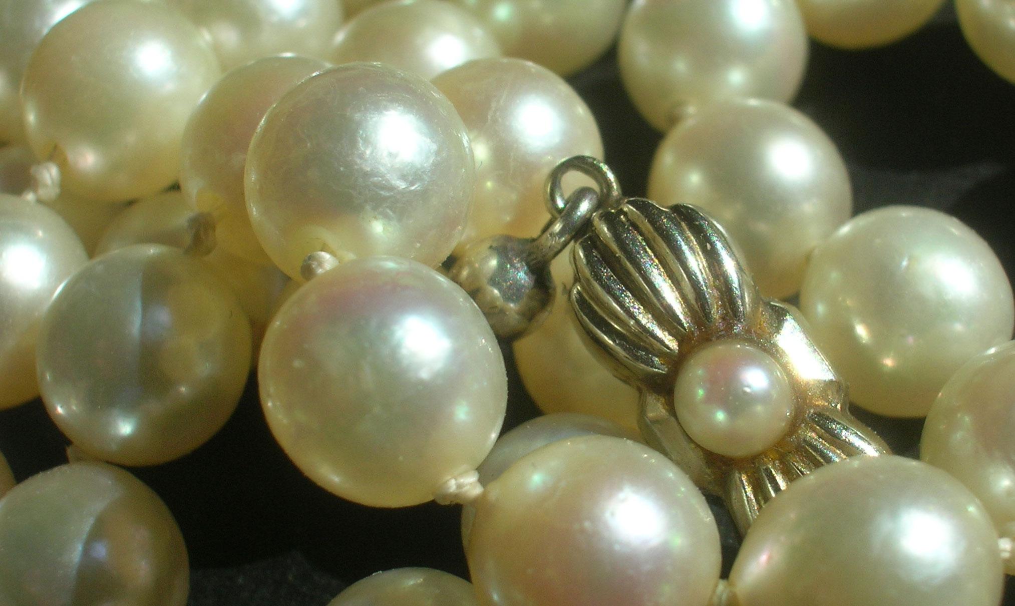 Perlen-im-Netz